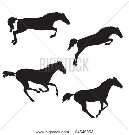 Set of five realistic horses. Black horses on isolated background. Set of wild horses. Vector horse collection. Silhouettes of horses.
