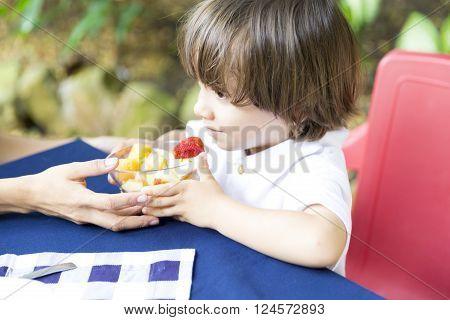 Lovely Boy Having Picnic