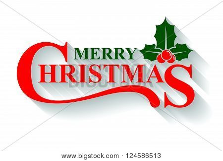 Merry Christmas greeting card holly design elements