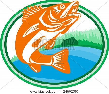Illustration of a Walleye (Sander vitreus formerly Stizostedion vitreum) a freshwater perciform fish with lake and cabin in the woods in the background set inside oval shape done in retro style.