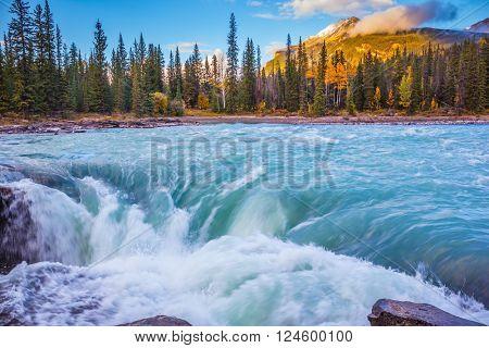 Powerful and scenic Athabasca Falls. Emerald water roars and foams on steep slope. Canada, Jasper National Park