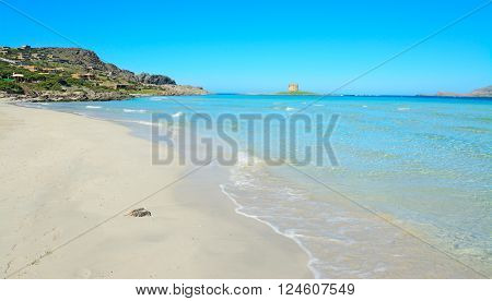 La Pelosa beach on a clear sunny day. Sardinia