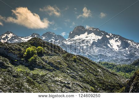 Picos de Europa mountains Cantabria (Spain)Europe .
