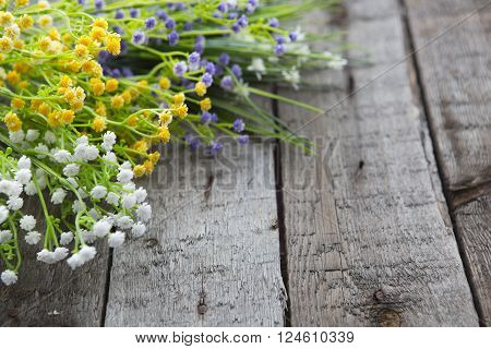 Wildflowers On The Background Of Wood.