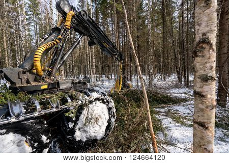 Woodworking. Image of logger busy working in winter forest ** Note: Shallow depth of field