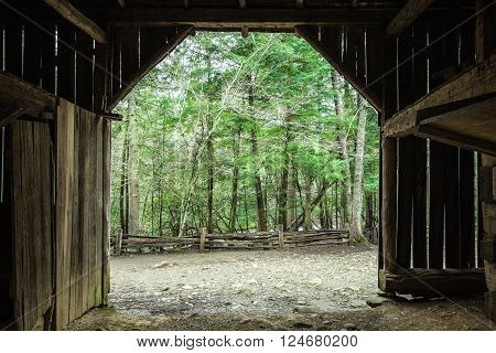 Spring Morning On The Farm. Spring Morning On The Farm.  Interior of a century old barn looking out to a lush green forest. ** Note: Visible grain at 100%, best at smaller sizes