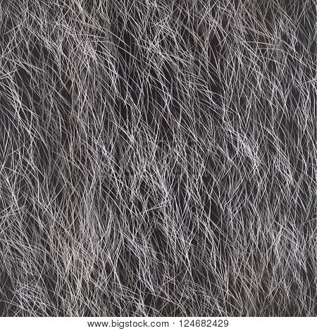 Arctic Fox Fur, Dog Fur, Wolf Fur. Digital Animal Fur  Illustration.