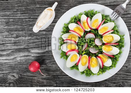 Delicious Spring onion eggs radish salad in a white dish with fork and gravy boat with homemade mayonnaise on an old rustic table horizontal top view