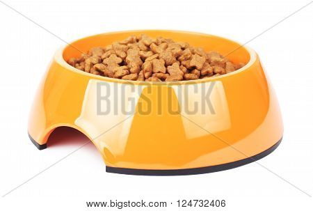 dry cat food in yellow bowl, isolated on white background