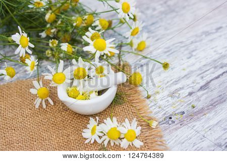 chamomile flowers in mortar on jute on the garden table