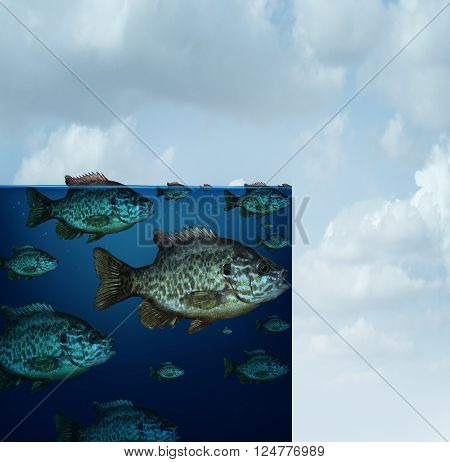 Restricted area business creative concept for drought or loss of habitat and global warming as a group of fish in an ocean that suddenly stops and ends abruptly abstract
