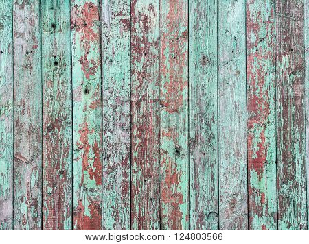 Old green crackle paint on the wooden background.