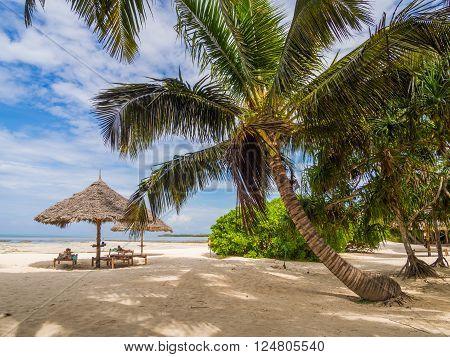 PONGWE ZANZIBAR - APRIL 01 2016: Beach next to one of the resorts in East Zanzibar Tanzania.