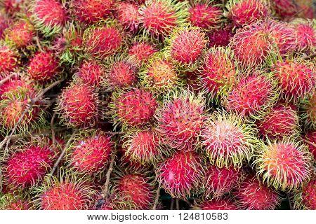 Fresh Malaysian Rambutan or Rongrien Rambutan background