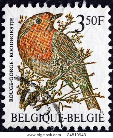 BELGIUM - CIRCA 1985: a stamp printed in the Belgium shows European Robin Erithacus Rubecula small Passerine Bird circa 1985