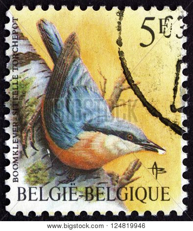 BELGIUM - CIRCA 1988: a stamp printed in the Belgium shows Eurasian Nuthatch Sitta Europaea small Passerine Bird circa 1988