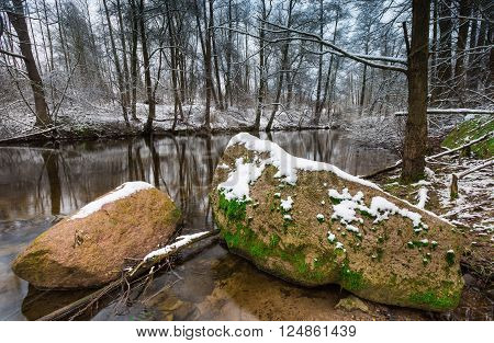 Beautiful landscape of winter forest with wild river. Tranquil wild landscape