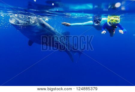 Cute boy with his mother snorkeling with whale shark in the sea, Philippines