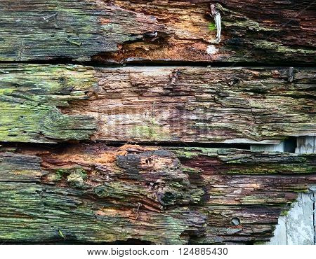 Wooden Texture, Background Image