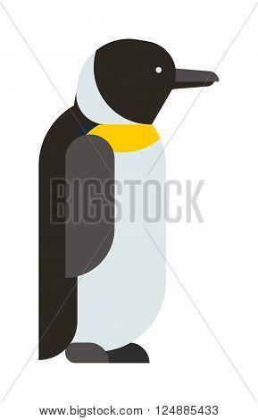 Antarctica polar penguin, beak pole winter penguin. Funny outdoors wild life south penguin character arctic. Emperor penguin cute animal and nature cold cartoon flat antarctica bird character vector.