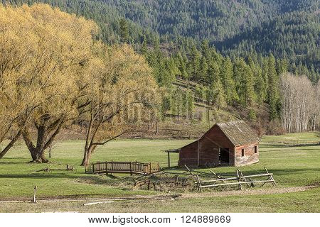 Barn by scenic trees in Idaho. An old barn sits in a quaint little meadow next to some trees in north Idaho.