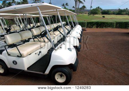 Tropical Golf Carts 2