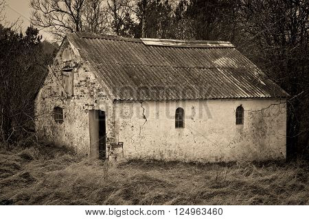 Black and white shot of an old barn in a forest