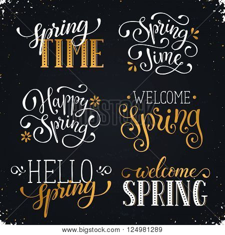 Hand written Spring time phrases in white and gold. Greeting card text templates on blackboard. Welcome Spring lettering in modern calligraphy style. Hello Spring wording.
