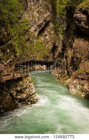 View on flowing mountain river in Vintgar Gorge in Slovenia