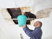 Man Collecting Water In Bucket From Ceiling. Ceiling panels damaged huge hole in roof from rainwater leakage.Water damaged ceiling . poster