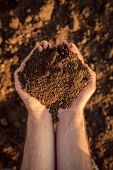 Arable land soil in hands of a responsible farmer male caucasian farmer holding pile of soil agronomist preparing land for new crop raising season close up of hands. poster