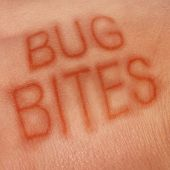 Bug bites medical concept and health care symbol for insect bite infection or skin irritation as human epidermis as text shaped in sores as for lym disease or dengue fever or zika virus and malaria. poster
