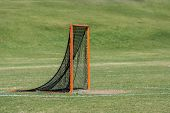 Single lacrosse goal with green grass background poster
