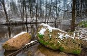 Beautiful landscape of winter forest with wild river. Tranquil wild landscape poster
