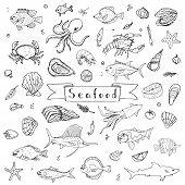 Hand drawn doodle Seafood icons set Vector illustration seafood symbols collection Cartoon fish Crab Seafood platter Lobster Oyster Shrimp Shellfish Shrimp Background for your menu or design poster