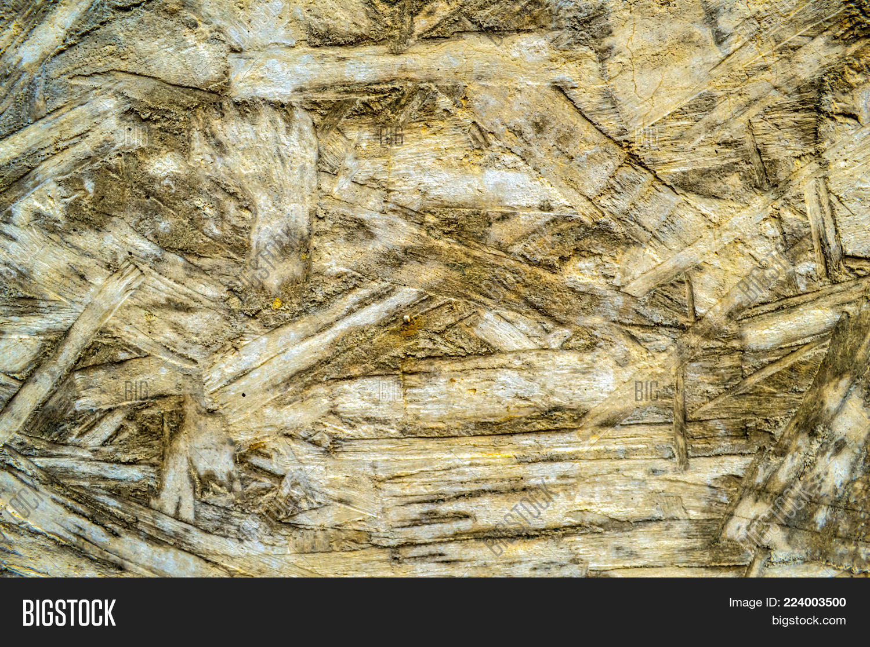 Board Formed Concrete Image & Photo (Free Trial) | Bigstock