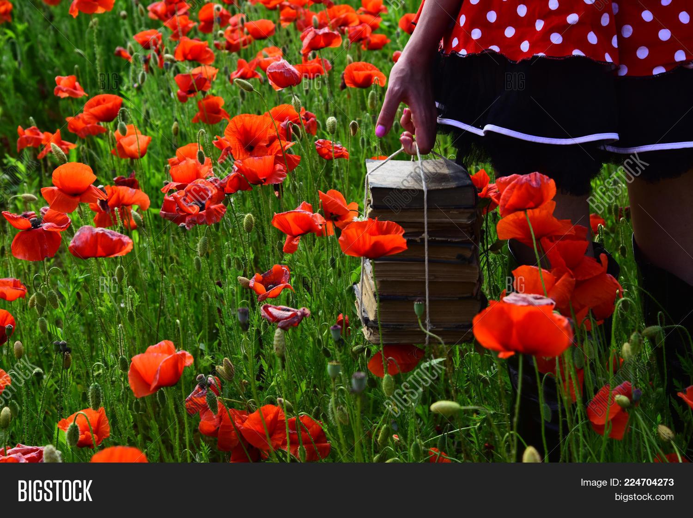 Drug Narcotics Opium Image Photo Free Trial Bigstock
