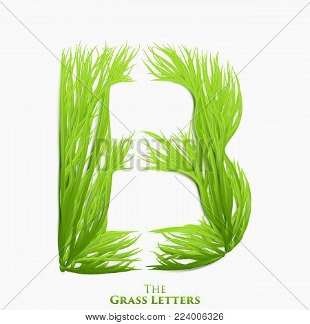 Vector letter B of juicy grass alphabet. Green B symbol consisting of growing grass. Realistic alphabet of organic plants. Spring and ecology typeset illustration