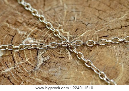 The texture of a brown stump enclosed in a metal chain. Macro shot with shallow depth of field