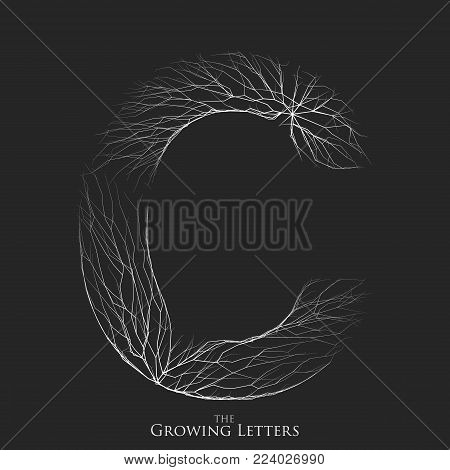 Vector letter C of branch or cracked alphabet. C symbol consisting of growing white lines. Fractured letters. Lighting silhouet of capital letters. Abstract font