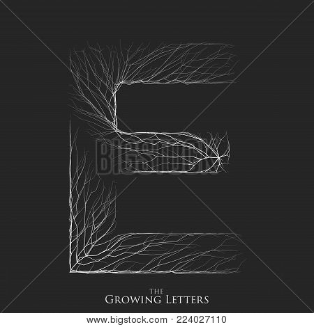 Vector letter E of branch or cracked alphabet. E symbol consisting of growing white lines. Fractured letters. Lighting silhouet of capital letters. Abstract font