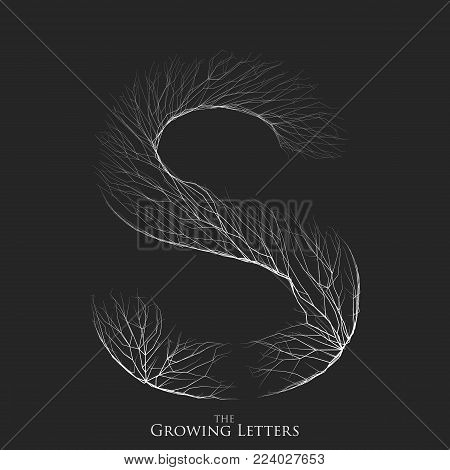 Vector letter S of branch or cracked alphabet. S symbol consisting of growing white lines. Fractured letters. Lighting silhouet of capital letters. Abstract font