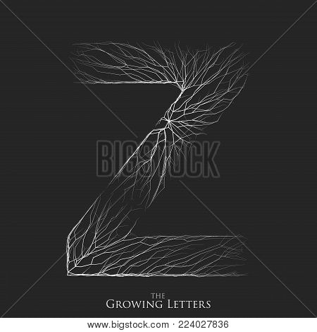 Vector letter Z of branch or cracked alphabet. Z symbol consisting of growing white lines. Fractured letters. Lighting silhouet of capital letters. Abstract font