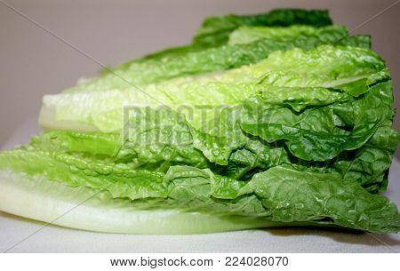 Fresh Organic Romaine Lettuce Leaves on cutting board