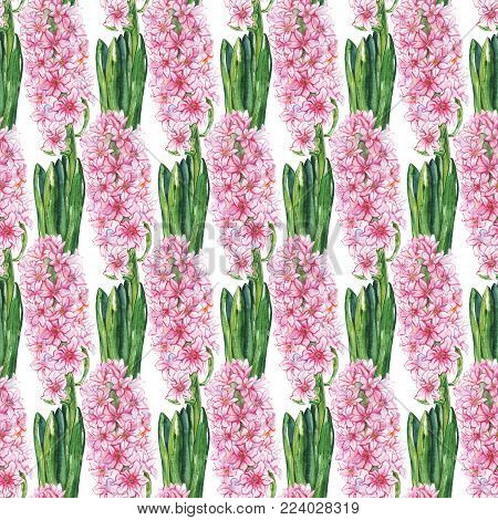 Watercolor pink hyacinth flower green leaf nature plant seamless pattern texture background