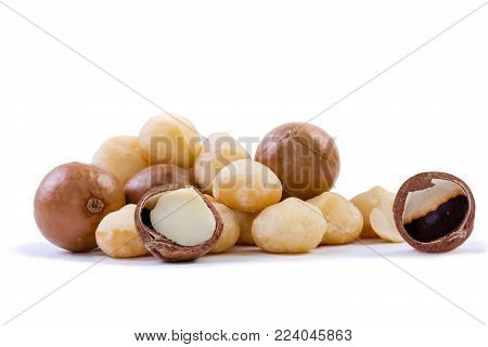 Pile of fresh macadamia nuts rich in nutrients with some whole shelled nuts, some nuts still in their shells and a few halved with loose shells on a white background
