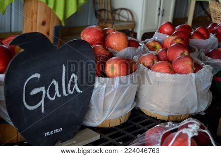 Fresh Gala apples for sale in baskets and bags