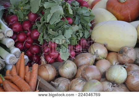 A variety of fresh produce on display and for sale at a local outdoor farmers market