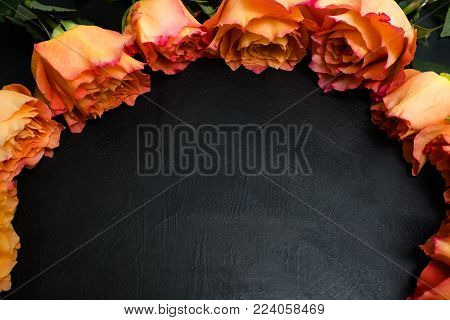 Orange and red autumn roses dark background. Symbol of deep feelings and elation. Free space concept