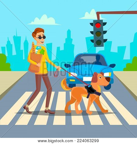 Blind Man Vector. Young Person With Pet Dog Helping Companion. Disability Socialization Concept. Blind Person And Guide Dog On Crosswalk. Character Illustration
